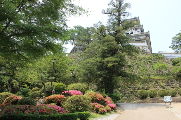 Kochi Castle garden
