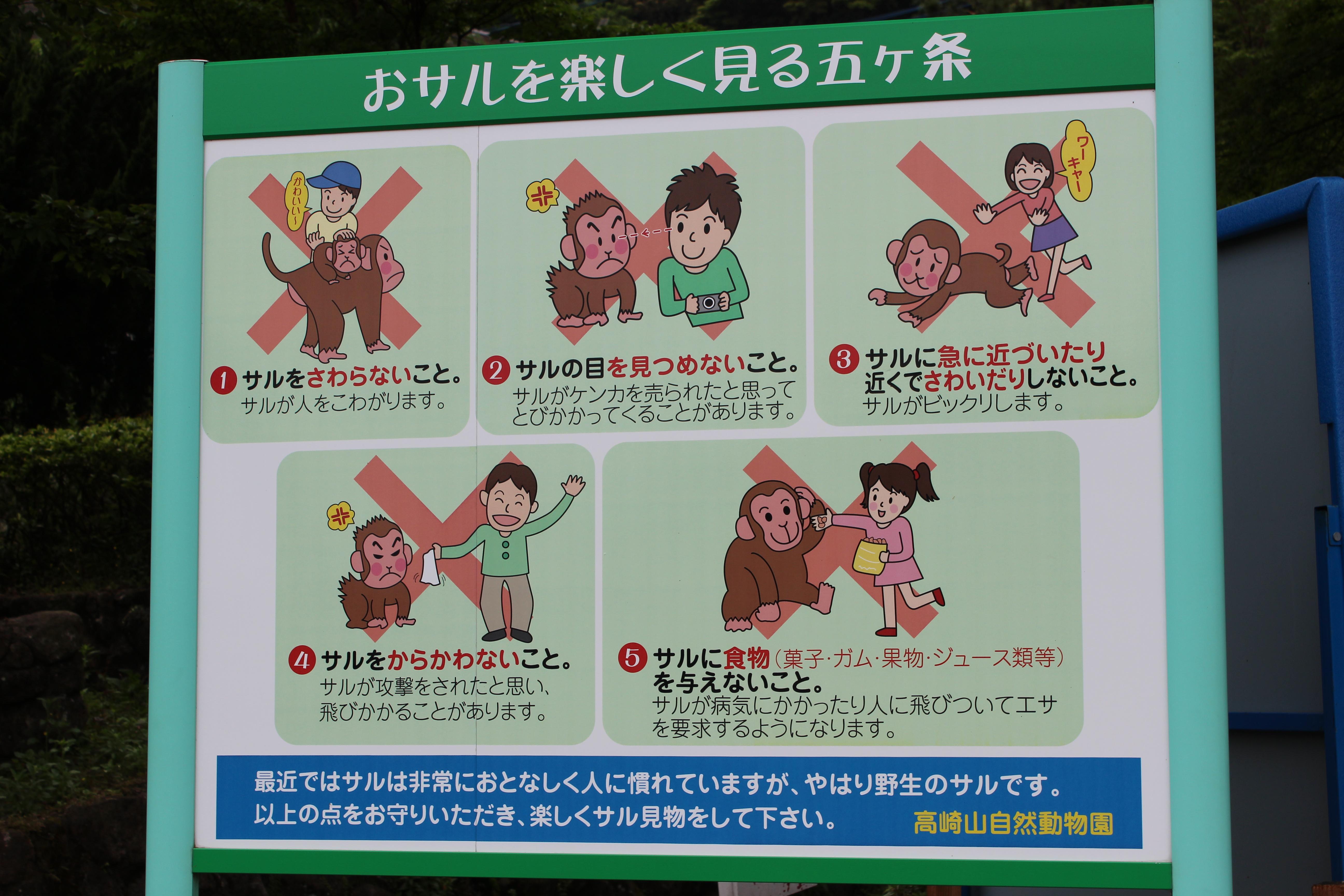 Парк обезьян Такасакияма