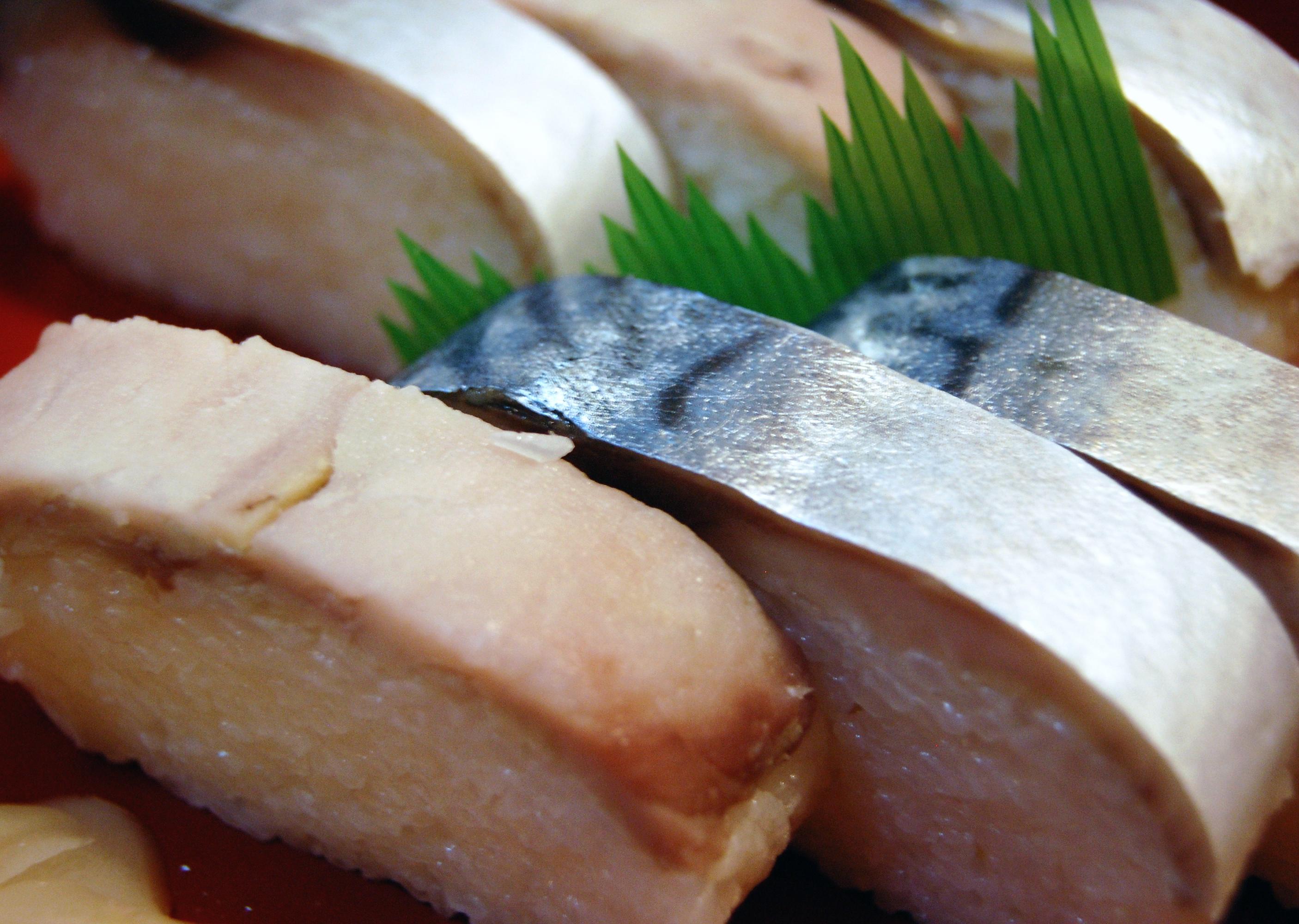 Mackerel sushi   Life Style   Japan Bullet  Japanese Mackerel Sushi