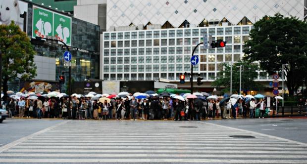 Shibuya10
